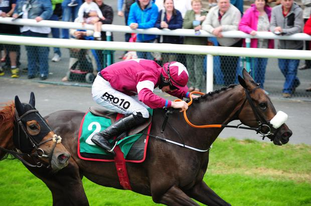 Tight finish: jockey Jack Kennedy guides Wrath of Titans to victory for a double at Downpatrick yesterday