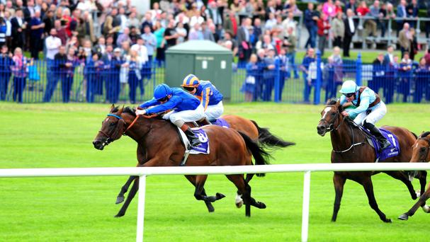 Tribal Beat (left) lands the Desmond Stakes at Leopardstown