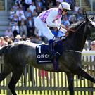 Amazing Maria ridden by James Doyle won The Qipco Falmouth Stakes during day two of the July Festival at Newmarket Racecourse.