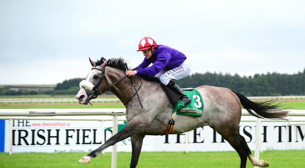 Success Days wins at the Curragh