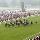 Early Morning can claim a second successive win at Ascot in the Stella Artois Handicap tomorrow (stock photo)