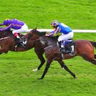 Wicklow Brave (left) denies Order Of St George to spring a surprise in the Irish St. Leger at the Curragh