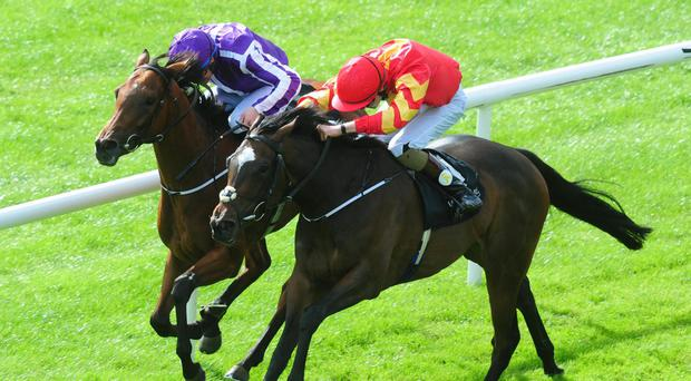 Intricately (right) gets the better of Hydrangea to win the Group 1 Moyglare Stud Stakes at the Curragh