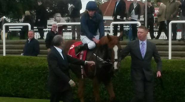 Alice Springs returns after her Sun Chariot success