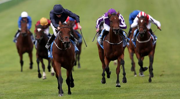 Rhododendron storms home in the Fillies' Mile