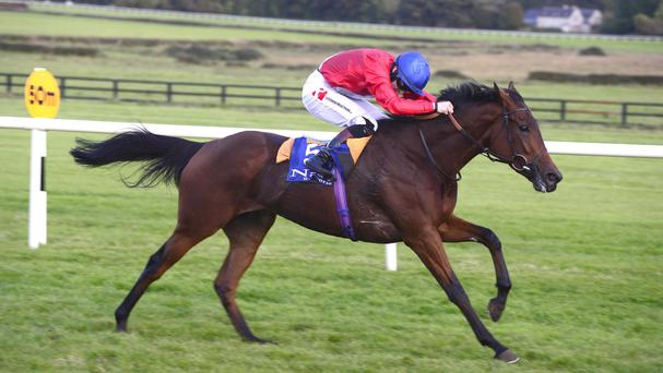 Intimation wins at Naas