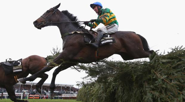 Power trip: Gilgamboa, with Robbie Power on board, on his way to fourth at Aintree in April