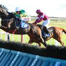 Landofhopeandglory jumps well at Fairyhouse