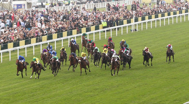 Trainer Tom George will have high hopes for Module in the Caspian Caviar Gold Cup at Cheltenham today (stock photo)