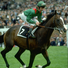 Tragic team: Walter Swinburn pilots Shergar to famous 1981 Derby win