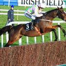 Min is brilliant at Leopardstown