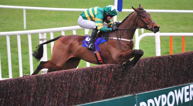 Great Field impresses at Leopardstown