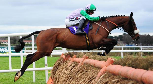 Hidden Cyclone over the last at Leopardstown