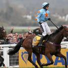 Ruby Walsh celebrates after landing the Ryanair on Un De Sceaux