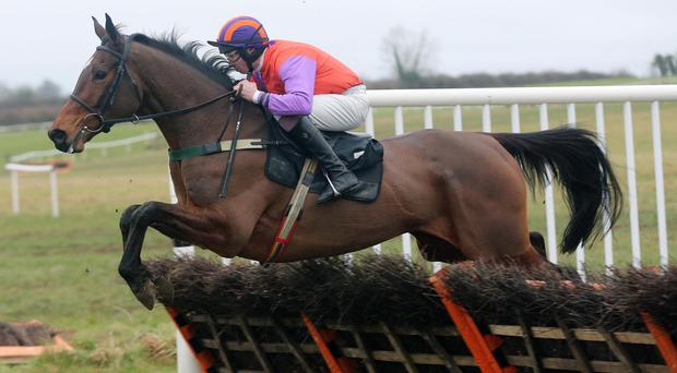 Jump to it: Love Rory can win tomorrow's Toals Bookmakers Ulster Grand National at Downpatrick