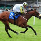 Irishcorrespondent is far too strong at the Curragh
