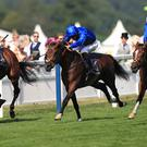 Barney Roy (right) swoops in the St James's Palace Stakes