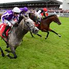 The grey Capri lands a thrilling Irish Derby