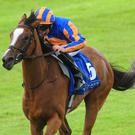 Actress wins the Anglesey Stakes