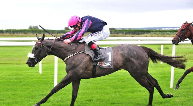 Sollertia opens her account at Roscommon