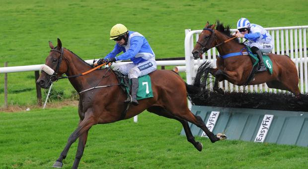 Small World wins at Downpatrick