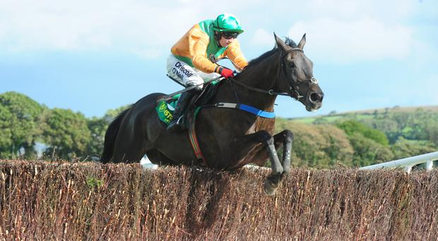 Dromnea is clear at Listowel