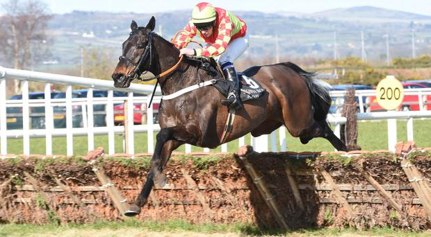On their way: Simon Torrens rides Rossmore's Pride to handicap hurdle joy at Down Royal