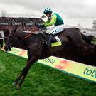 Up for Cup: Denman on his way to victory in the 2008 Cheltenham Gold Cup