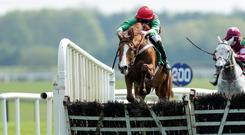 Top tip: Rashaan is bidding for repeat victory at Down Royal