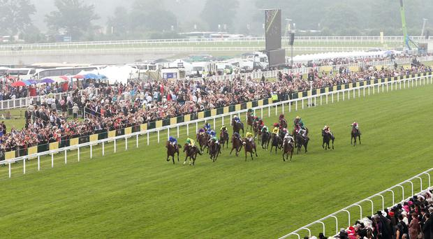 'Magical ran a creditable race in the Arc and was actually leading at this distance before fading in the final furlong and a half on the testing ground to take fifth place behind Waldgeist' (stock photo)