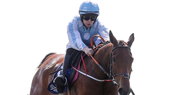 One to watch: Honeysuckle, here with Rachael Blackmore on board at Fairyhouse, is a likely favourite for the Down Royal festiv