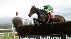 Form choice: Derek O'Connor and Edwulf can score at Down Royal today