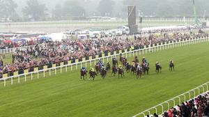 Horse Racing Ireland had been consulting with the Irish government on the possibility of an earlier return, with chief executive Brian Kavanagh underlining the fact racing was staged without spectators before it shut down in March (stock photo)