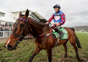 Hotly tipped: Aidan Coleman onboard Paisley Park, who is going for a second straight Stayers' Hurdle victory