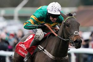 Powering on: Barry Geraghty has the Champion Hurdle on Epatante in his sights