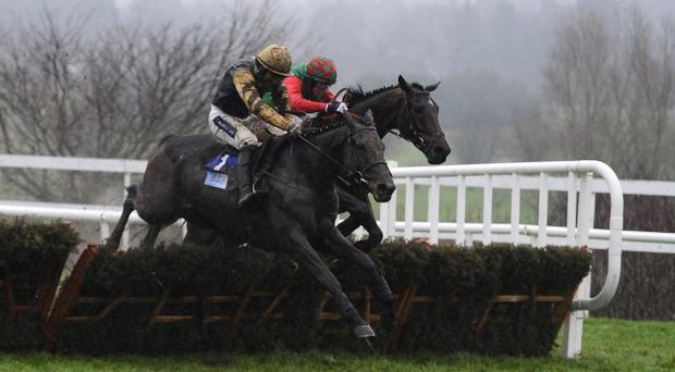 Boston Bob, seen here at Leopardstown, will go head-to-head with Ruby Walsh's Unionists in today's RSA Chase