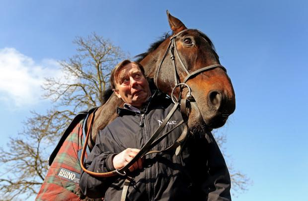 Trainer Nicky Henderson with Sprinter Sacre, The Punter's pick for the 3.20pm at Cheltenham