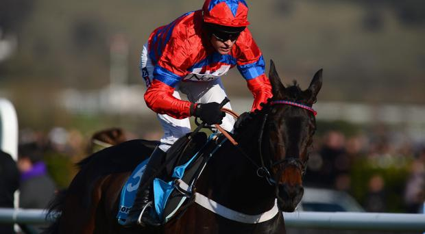 CHELTENHAM, ENGLAND - MARCH 13: Barry Geraghty on Sprinter Sacre romps home in the Sportingbet Queen Mother Champion Chase at Cheltenham Racecourse on March 13, 2013 in Cheltenham, England. (Photo by Mike Hewitt/Getty Images)