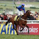 CHELTENHAM, ENGLAND - MARCH 14: Joe Tizzard celebrates on Cue Card after victory in the Ryanair Chase during the Cheltenham Festival at Cheltenham Racecourse on March 14, 2013 in Cheltenham, England. (Photo by Andrew Redington/Getty Images)