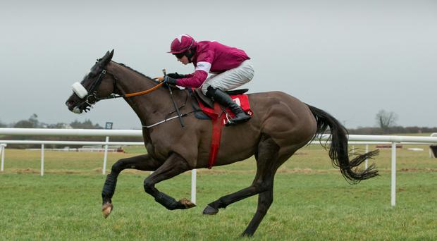 Ready for take-off: Don Cossack, with Bryan Cooper on board, can win Ryanair Chase for race sponsor Michael O'Leary