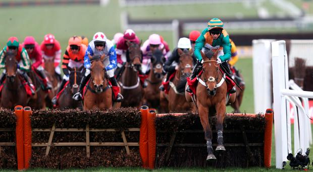 Up and over: Cole Harden (right), with Gavin Sheehan aboard, on the way to winning the Ladbrokes World Hurdle, yesterday's feature race at the Cheltenham Festival