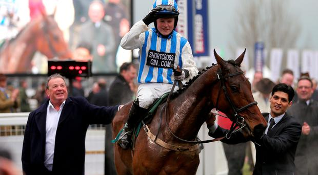 V for victory: Ulster-owned Killultagh Vic, Luke Dempsey on board, after winning Martin Pipe Conditional Jockeys Handicap