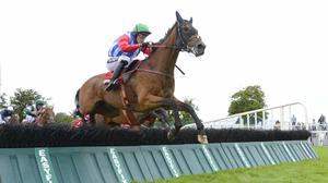 Miss Eyecatcher puts her best foot forward at Galway