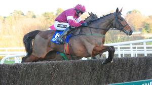 Don Poli wins at Leopardstown