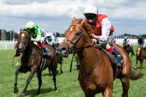 Home first: Adam Kirby and Golden Horde win the Commonwealth Cup during day four of Royal Ascot