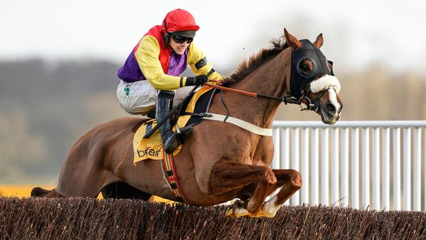 Going Native: Jonjo O'Neill Junior riding Dromore bred Native River to victory at Newbury on Saturday