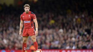 Leigh Halfpenny has been ruled out of the World Cup with knee ligament damage