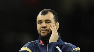 New Australia boss Michael Cheika, pictured, will not stand for mediocre performances, according to captain Michael Hooper