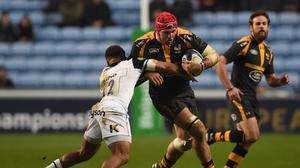 James Haskell has agreed a new contract with Wasps