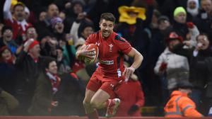 Wales scrum-half Rhys Webb noted his country finished the tournament on a high